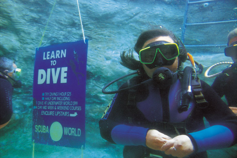 Diving on the Gold Coast