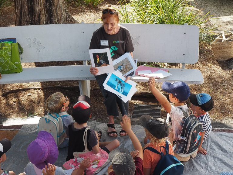Fun School Holiday Events for the Kids Near Isle of Palms Accommodation